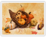 happy thanksgiving from 18 visions design